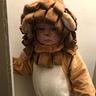 Photo #6 - Baby Lion
