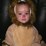 Photo #4 - Serious baby lion