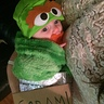 Photo #1 - Baby Oscar the Grouch