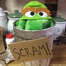 Photo #2 - Baby Oscar the Grouch