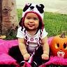 Photo #1 - Baby Panda