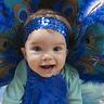 Photo #3 - Baby Peacock