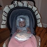 Photo #2 - Baby Pearl in a Clam Shell