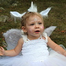 Photo #1 - Baby Pegacorn