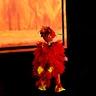 Photo #4 - Baby Phoenix