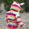 Photo #2 - Baby Piñata