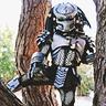 Photo #1 - Baby Predator