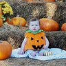 Photo #2 - Baby Pumpkin