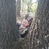 Photo #2 - Climbing trees