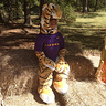 Photo #2 - Chilling tiger at the zoo!