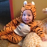 Photo #4 - Baby Tiger