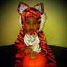 Photo #1 - Baby Tiger