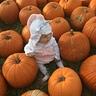 Photo #3 - Unicorn in pumpkin patch