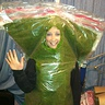 Photo #3 - Bag of Weed