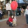 Photo #2 - Balloonist