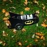 Photo #3 - Bat Signal