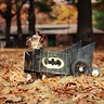 Photo #4 - Bat in the Leaves