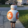 Photo #3 - BB8 back