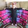 Photo #1 - Beautiful Butterfly