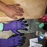 Photo #5 - Gloves for claws