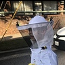 Photo #4 - Bee Keeper and his Bees
