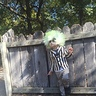 Photo #3 - Beetlejuice