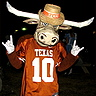 Photo #1 - Texas Longhorn Bevo