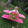 Photo #4 - Bi-Plane