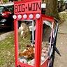 Photo #1 - Big Win