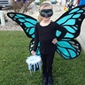 Photo #1 - Trick or treating butterfly