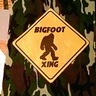 Photo #4 - Owen's bigfoot crossing candy bag