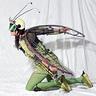 Photo #5 - Bikehopper - take off