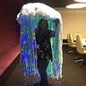 Photo #2 - Bioluminescent Jellyfish