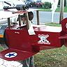 Photo #3 - Bi-Plane Pilot