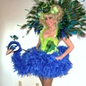 Photo #1 - DIY Peacock costume - full length