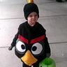 Photo #1 - Black Angry Bird