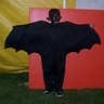 Photo #1 - Black Bat
