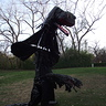 Photo #2 - Black Dragon raised from side.