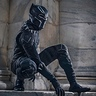 Photo #3 - Black Panther