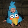 Photo #5 - Blue Angry Bird