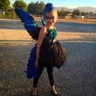 Photo #1 - Blue Bird