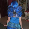 Photo #2 - BLUE BUTTERFLY 2