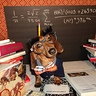 Photo #2 - Bookworm Dogs
