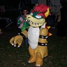 Photo #3 - Bowser action