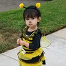 Photo #1 - Bubble Bee