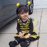Photo #2 - Bubble Bee