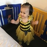 Photo #4 - Little Ella-bee