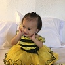 Photo #5 - Little honey-bee
