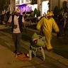 Photo #4 - Bulbasaur trick or treating!