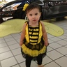 Photo #2 - Bumble Bee